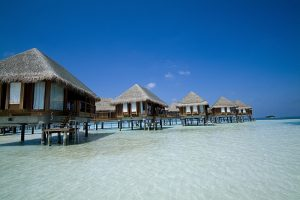 holiday packages, cheap flights, cruise deals, groups & tours, travel insurance