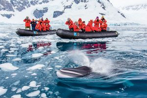 Antarctica, cheap flights, cruise deals, holiday packages, travel insurance