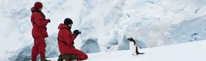 Antarctica, cheap flights, cruise deals, holiday packages, tours, travel insurance