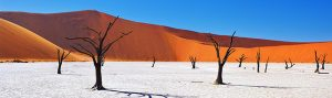 Namibia, Africa, cheap flights, cruise deals, holiday packages, tours, travel insurance