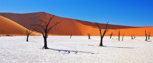 Namibia, Africa, holiday packages, tours. cheap flights, travel insurance